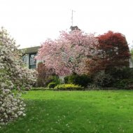 Cultuurherberg met tuin
